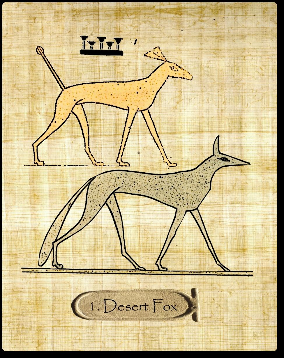 Desertfox01_desertfox_web