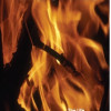 FIRECHILD<BR>The Life and Magic of<BR>Maxine Sanders 'Witch Queen'<BR>Maxine Sanders